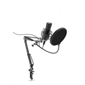 Микрофон Ritmix RDM-180 чёрный по отличной цене с промокодом